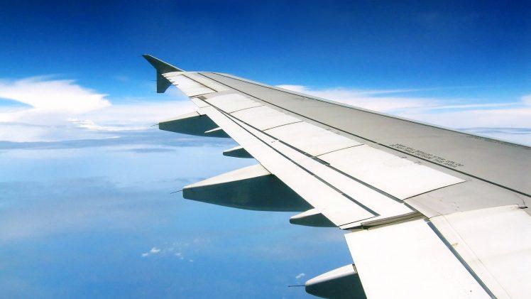 Vamos viajar juntos?